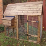chicken-poultry-house