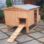 small-chicken-house